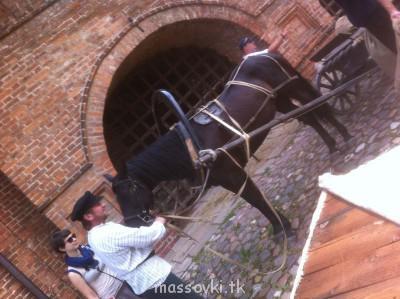 Наша лошадка - image.jpg
